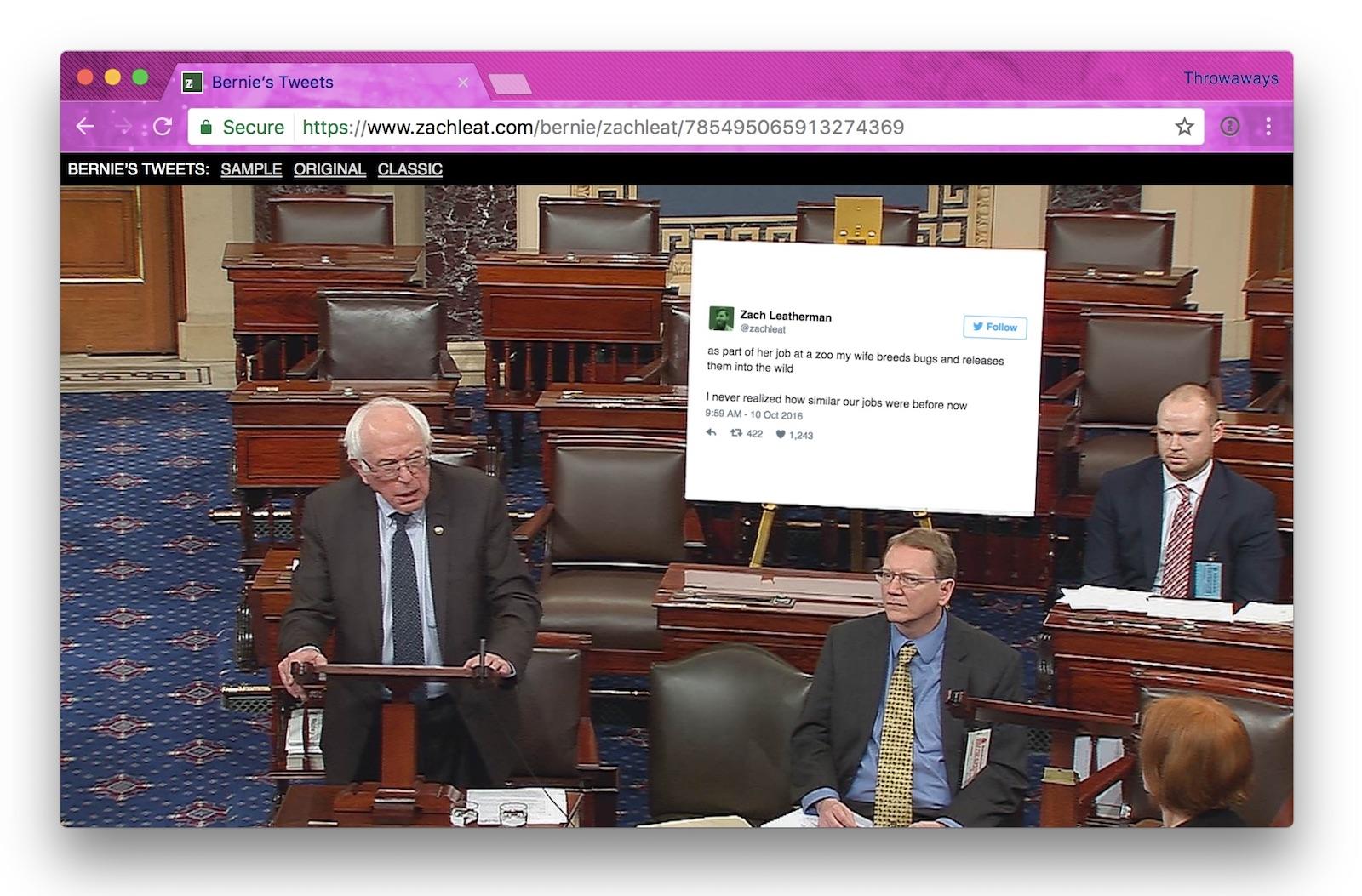 Screenshot of Bernie Tweets